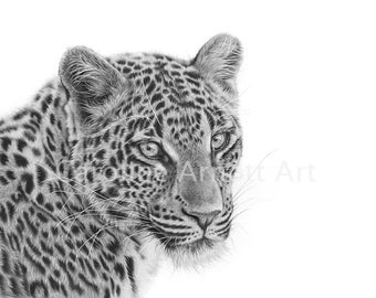 "Searching Amur Leopard 11x14"" Limited edition print"