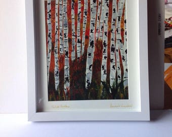 Silver or aspen trees