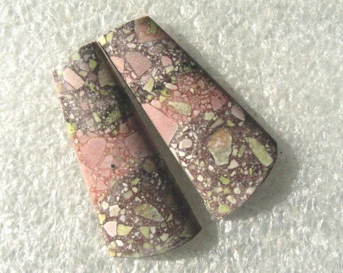 Gecko jasper long earring cabochons