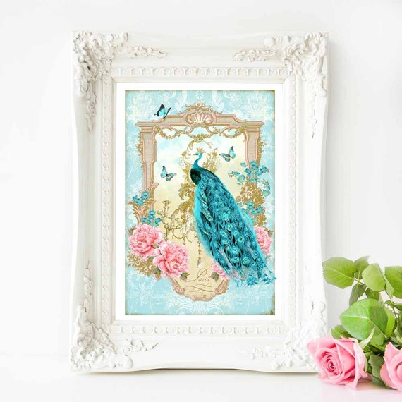 Peacock Print Romantic Vintage Illustration French
