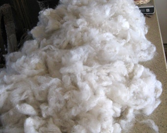 White Alpaca Fleece, Washed Fiber, 5.5 ounces for Spinning, Felting, Dyeing, Cirrus