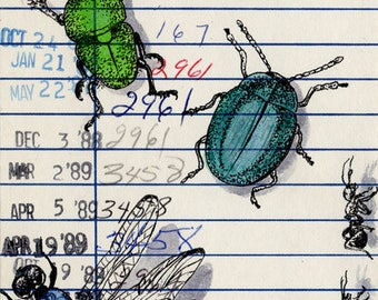 Bugs Upcycled Library Card Print