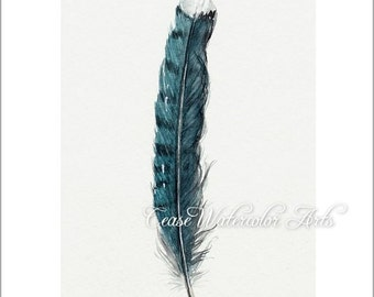 Blue jay feather, watercolor 5x7  giclee print