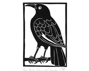 Linocut of an Australian White Winged Chough in Traditional Black, Australian Bird Print, Printmaking, Lino Print