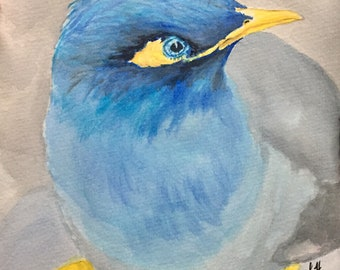 Original Blue Bird - watercolor