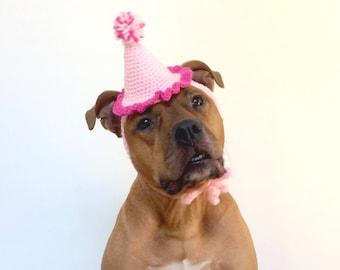 Dog Birthday Hat, Gotcha Day Hat, Pink Dog Party Hat, Birthday Hat for a Dog, Pink Dog Hat, Dog Party Hat