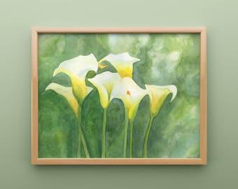 Calla Lilly Watercolor Print