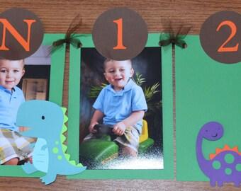 Dinosaur Newborn to 12 Months Photo Banner - Boy's Birthday Party