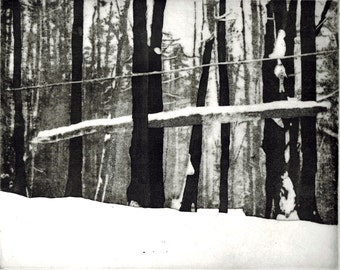 Cook Forest Winter, original hand printed aquatint etching
