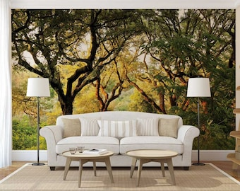 Wall Mural Woods, Trees Wall Mural, Woods Wall Mural, Wallpaper Forest, Wall Decal Trees