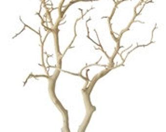 Sandblasted Manzanita Branches - 24 inches tall, 12 pieces