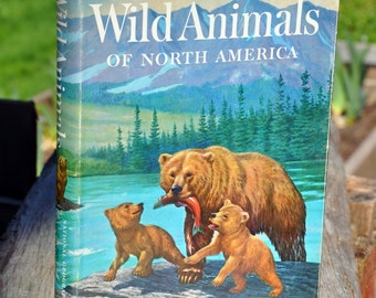 Wild Animals of North America National Geographic Society book 1960, Wildlife narratives by naturalists