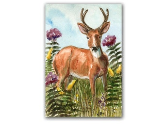 Buck in Wild Flowers  LLMartin Original Watercolor Painting Virginia Country Deer Free First Class Shipping USA