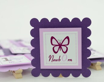 Butterfly 12 Month Banner, 1st Year Photo Banner, 1st Year Banner, Butterfly Birthday Banner, Light Purple & Dark Purple butterfly, c-1099