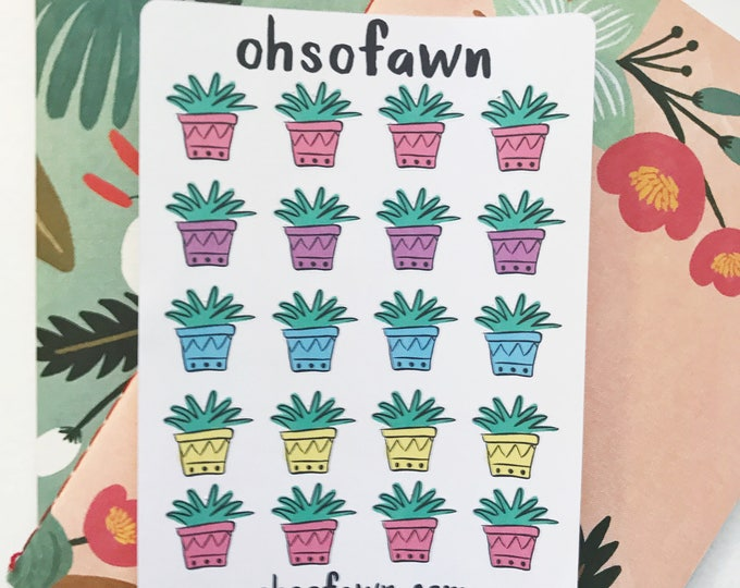 Hand Drawn Succulent Stickers