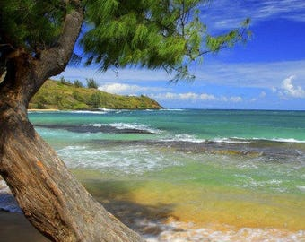Hawaiian Breeze Fresh Hand Dipped Charcoal Incense 20 Sticks Tropical Home Fragrance Handmade Gift Beach Ocean