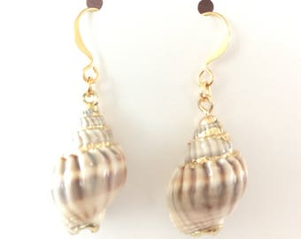 CLEARANCE Shell Earrings