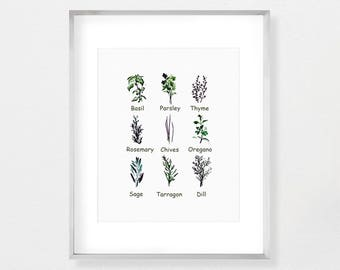 Botanical Art, Kitchen Herbs, Kitchen Decor, Kitchen Wall Art, Herb, Herb Art Print, Herb Prints, Herbs, Watercolor, Herb Wall Decor