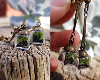Cube Terrarium Stud Dangle Earrings