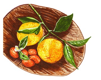 Oranges + kumquat Sketchbook série marqueur Illustration
