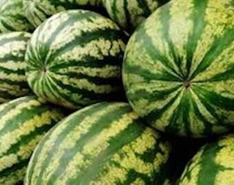 Watermelon - 200+ Seed - Crimson Sweet - 25 Grams