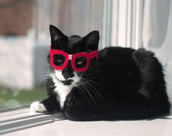 Nerd Glasses for Cats - Kitty Poindexter **NEW DESIGN**