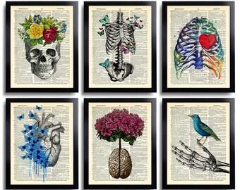 Anatomy art | Etsy