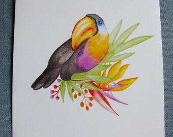 toucan bird poster A4 poster