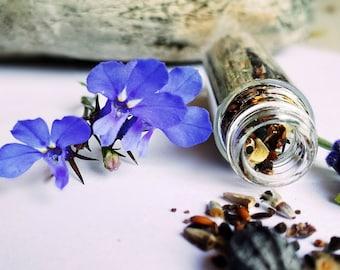 SEED Wedding Favors Natural Wedding Favors Gardening 40 Vials Of Herb Seeds GARDEN seeds