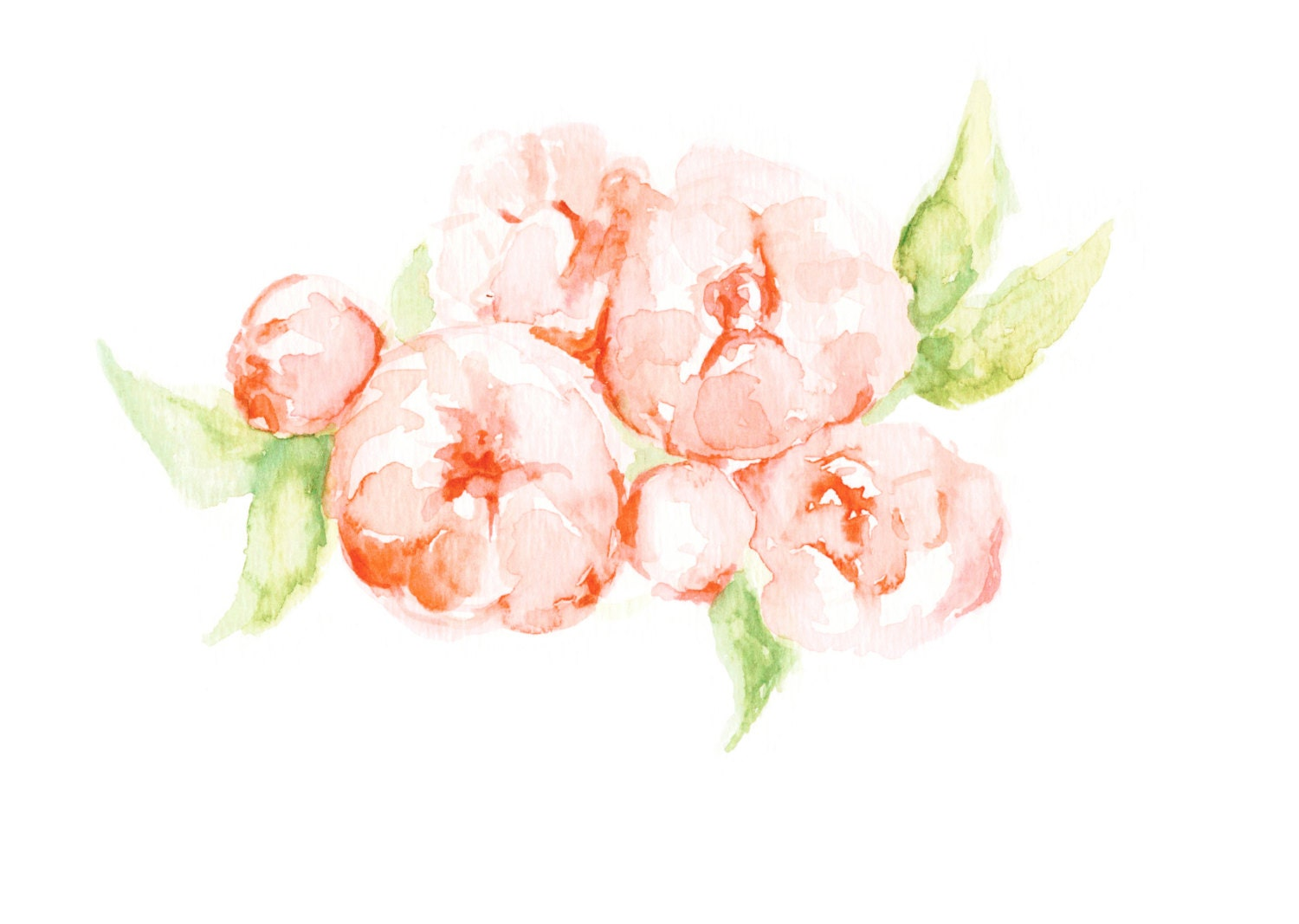 Peony Print Flowers Floral Painting Floral Watercolor