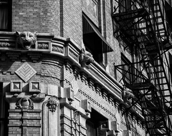 Fort Worth, Texas, Building, Architecture, Renaissance Revival, National Register, Historic - Fort Worth Flatiron Detail Black and White