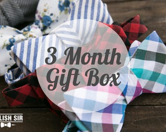 3 Month Subscription Gift Box Stylish Sir Perfect Gift For Groomsmen Formal Classic Modern Bowtie Self Tie Flannel Pattern