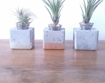 Metallic Dipped Concrete Cube Air Plant Holder