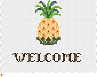 Welcome Pineapple Cross-Stitch - Finished Product