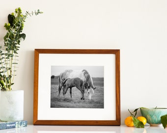 Framed Horse Photography - mat included - framed farm art - fine art photos - mothers art - ready to hang - wall art - oversize photographs
