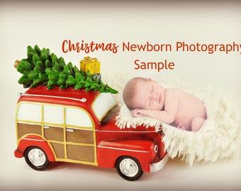 Christmas Newborn Photography / Christmas December Newborn Photo