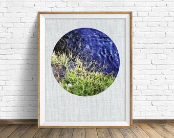"nature photography, large art, large wall art, instant download printable art, fine art photography, nature prints, navy blue - ""Sprout"""