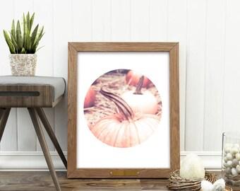 pumpkin print, autumn decor, instant download, pumpkin photography, October, autumn nursery idea, orange, peach, harvest, fall decor