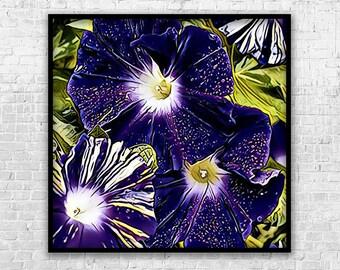 Morning Glories, Art Print, Printable Art, Digital Art, Instant Download, Wall Decor