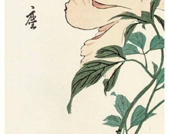 Hand-cut wooden jigsaw puzzle. PEONIES & BIRDS JAPAN. Hiroshige. Japanese woodblock print. Wood, collectible. Bella Puzzles.