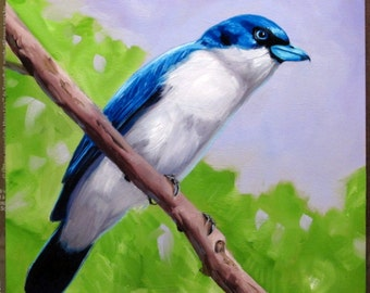 "ORIGINAL Bird Oil Painting, BLUE VANGA. New on Hardboard Panel, 6"" X 6"". Animal Art, One-of-a-Kind Artwork, Small Bird, Nature, Tree Branch"