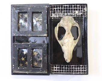 Memento Mori  - Original Mixed Media Assemblage