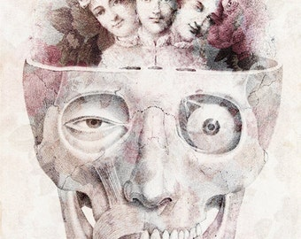 Oddities - FREE SHIPPING - Print Medical Diagram Science Biology Skull Face Eye Black White Pink Girls Three Heads Freak Surreal Flowers