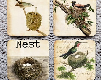 Nest -- Vintage Bird Illustration Mousepad Coaster Set