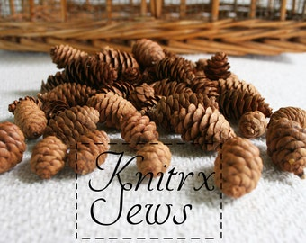 50 Mini Pine Cones Natural Rustic Decor North Woods Cabin Wedding Decor Christmas Decoration Natural Pine Cones Craft Supply Florist Supply