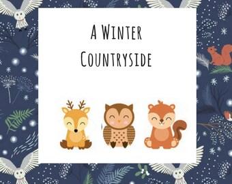 Winter/Christmas Collection A Winter Countryside Dog Pet Tie On Bandana Neckerchief