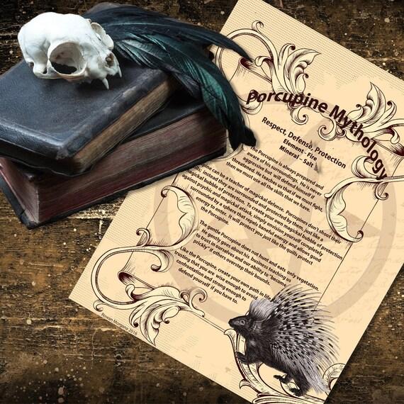 Porcupine Mythology