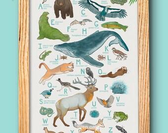 "ABC Animal Print - 13x19 print - baby kids nursery art, California whale fox quail ""California Animals"""