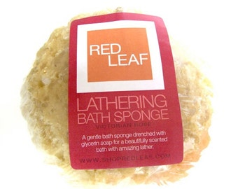Soap Sponge, Bath Sponge Drenched With Sweet Smelling Glycerin Soap, Free Shipping, Great Gift Basket Item Red Leaf Soap Seattle