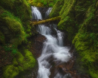 Gorton Scramble, Emerald Falls, Waterfall, Columbia River Gorge, Forest, Oregon, Pacific Northwest - Travel Photography, Print, Wall Art